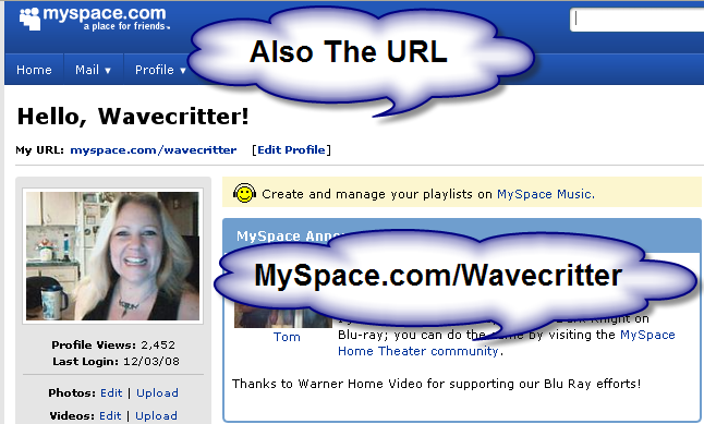 Wavecritter MySpace